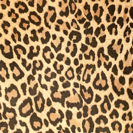 Leopard leather pattern texture closeup background.