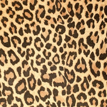 Leopard leather pattern texture closeup background.