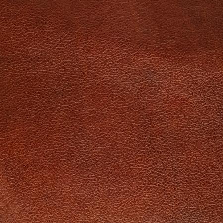 cuero vaca: Brown textura de cuero blanco de fondo.