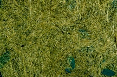 Closeup of Handmade straw texture  background  Stock Photo - 19833660