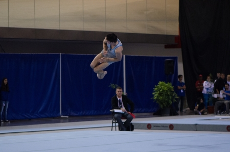 ANADIA, PORTUGAL - JUNE 21: David Bishop (NZL) during the Art Gymnastics FIG World Cup Challenge on june 21, 2013 in Anadia, Portugal.