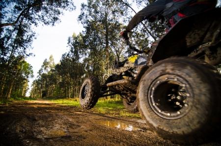 Quad rider jumping on a muddy forest trail. Фото со стока - 21174410