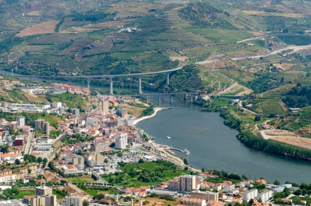 wine grower: Terraced vineyards in Douro Valley, Alto Douro Wine Region in northern Portugal
