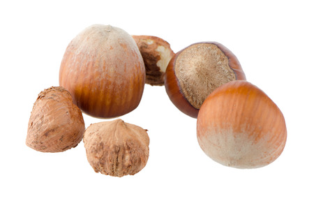 Tasty hazelnuts on a white reflective background. photo