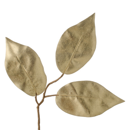 Christmas decorative golden leaves isolated on white background. photo