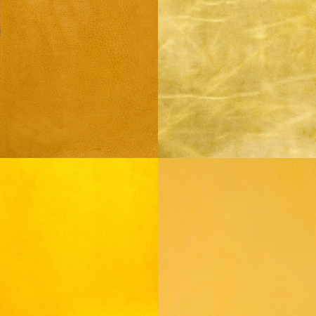 cow hide: Set of yellow leather samples, texture background. Stock Photo