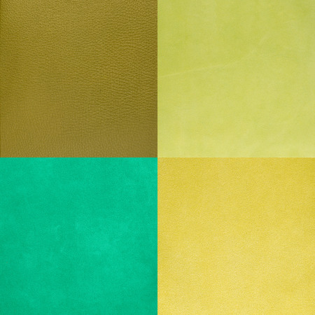 Set of green leather samples, texture background.
