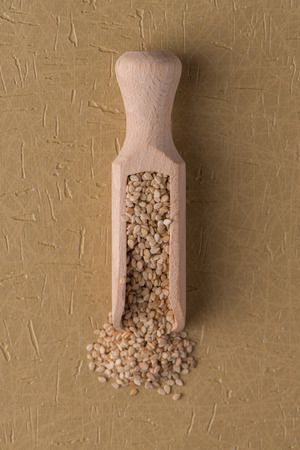 sesame seeds: Top view of sesame seeds against yellow vinyl background. Stock Photo