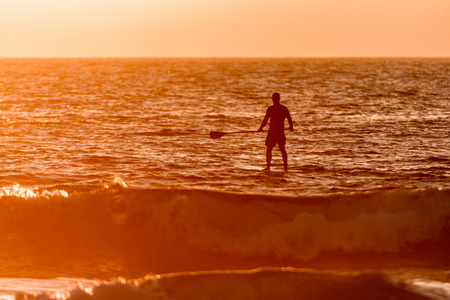 paddler: Stand up paddler silhouette at sunset. Concept about sport, surf, vacations and people.