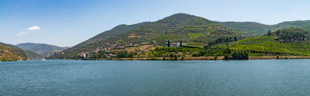 Vineyards are on a hills, view of Douro Valley, Portugal.