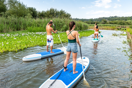 Men and women stand up paddleboarding on lake. Young couples are doing watersport on lake. Males and females tourists during summer vacation. Stock fotó