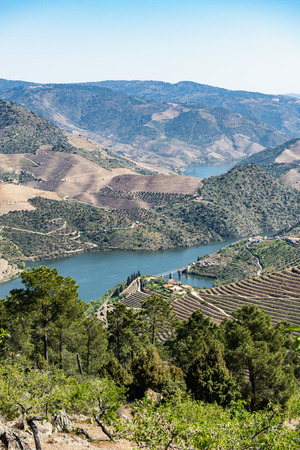 Viewpoint of Vargelas allows to see a vast landscape on the Douro and its man-made slopes. Douro Region, famous Port Wine Region, Portugal. Stock Photo