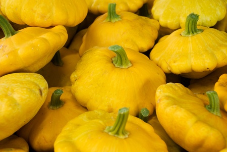 cymbling: Fresh yellow cymbling (custard marrow or squash)