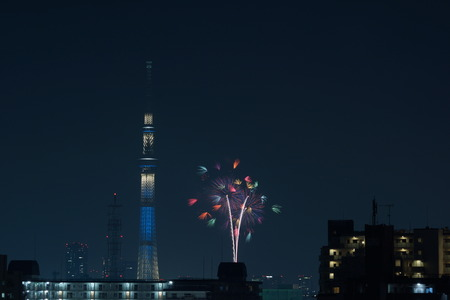 sumida ku: Fireworks and Sky Tree