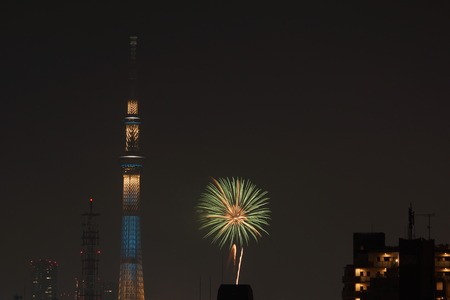 sumida ku: Sky tree and fireworks