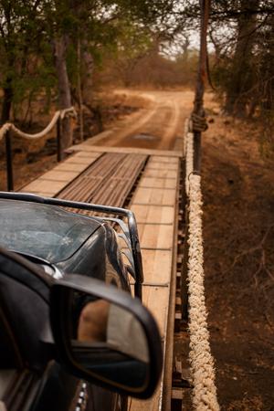 Car safari going through hinged bridge. Wild life in Safari. Baobab and bush jungles in Senegal, Africa. Bandia Reserve. Hot, dry climate. Vertical view from outside the car. 写真素材