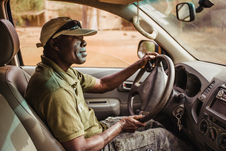 Afro-american Driver of Jeep Safari in Senegal, Africa. View from passengers seat. 報道画像