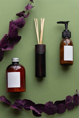 Mock up with brown cosmetic dispenser with red purple leaves. Organic treatment concept. Beauty blogging, salon treatment concept, minimalism brand packaging mock up. Aromatherapy 免版税图像