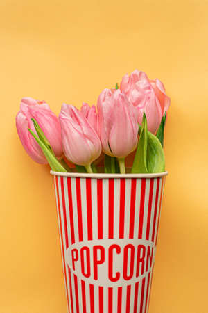 Tender pink tulips inside of red striped popcorn cup on pastel yellow background. Greeting card for Women's day. Flat lay. Copy space. Place for text. Concept of international women's day, mother's day, easter. Valentines love day 免版税图像