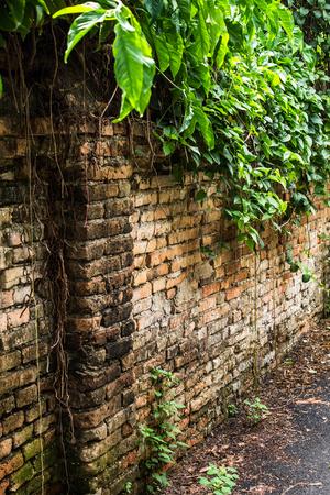 pedestrian walkway: old brick wall located beside the pedestrian walkway. Stock Photo