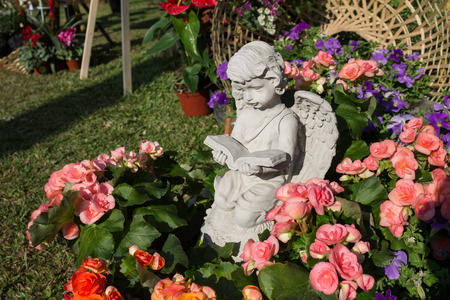 angel roses: The little cupid was reading a book and surrounded by the beautiful flowers.
