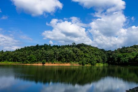 lack of water: beautiful view of lake