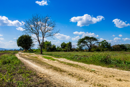ChiangMai, Thailand. January, 26-2017: Community road leads to countryfield and passby bare tree in some place at rural area of Chiang Mai province. Stock Photo