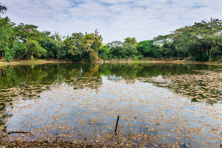 Lampoon, Thailand. February, 17-2017: The available quantity of water has been reserved at the community pond as the reasons of needing for agricultural purposes in remote districts. Stock Photo