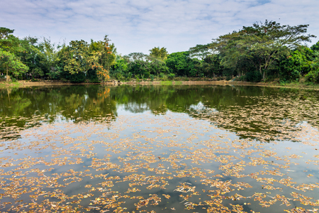 reasons: Lampoon, Thailand. February, 17-2017: The available quantity of water has been reserved at the community pond as the reasons of needing for agricultural purposes in remote districts. Stock Photo