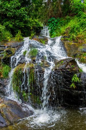 チェンマイ、タイ。10 月 07-2016: Huay Kaew 水はドイステープ山の上から流れを落ちる。 写真素材