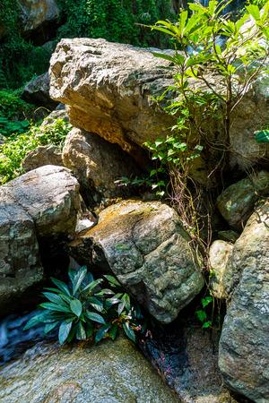 チェンマイ、タイ。10 月 07-2016: Huay Kaew 水はドイステープ山の上から流れを落ちる。 報道画像