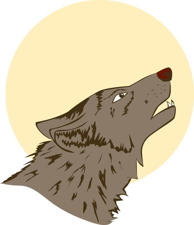 Wolf Stock Vector - 16708167
