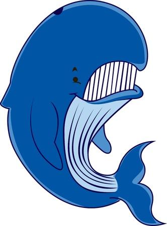 Big whale Illustration