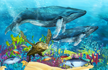cartoon scene with whale near coral reef - illustration for children