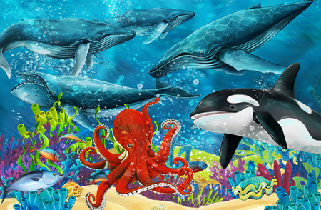 cartoon scene with whale and killer whale and octopus near coral reef - illustration for children Banque d'images - 116014413