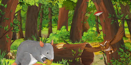 cartoon summer scene with deep forest and bird owl and rat - nobody on scene - illustration for children