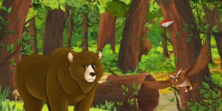 cartoon summer scene with deep forest and bird owl and bear - nobody on scene - illustration for children Banque d'images - 124455157