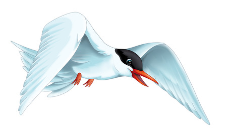 cartoon scene with flying bird tern isolated on white background illustration for children Banque d'images - 124455301