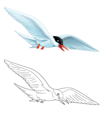 cartoon scene with flying bird tern isolated on white background with coloring page sketchbook illustration for children Stockfoto