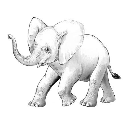 cartoon scene with little elephant on white background safari coloring page sketchbook illustration for children Banque d'images - 124455310