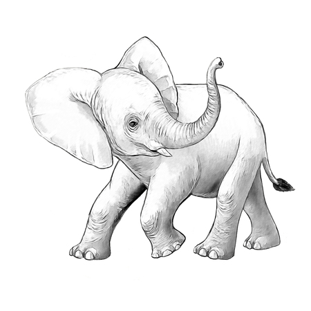 cartoon scene with little elephant on white background safari coloring page sketchbook illustration for children Banque d'images - 124455312