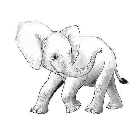 cartoon scene with little elephant on white background safari coloring page sketchbook illustration for children
