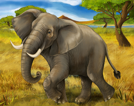 cartoon scene with elephant safari illustration for children Banque d'images - 124455315