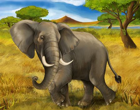 cartoon scene with elephant safari illustration for children