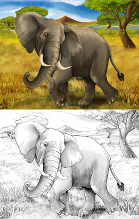 cartoon scene with elephant safari illustration for children Banque d'images - 124455410