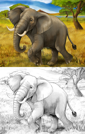 cartoon scene with elephant safari illustration for children Banque d'images - 124455412