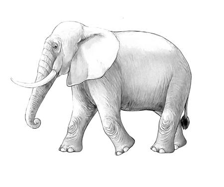 cartoon scene with big elephant on white background safari coloring page sketchbook illustration for children Banque d'images - 124455417