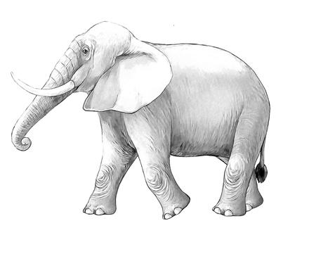 cartoon scene with big elephant on white background safari coloring page sketchbook illustration for children Banque d'images - 124455442