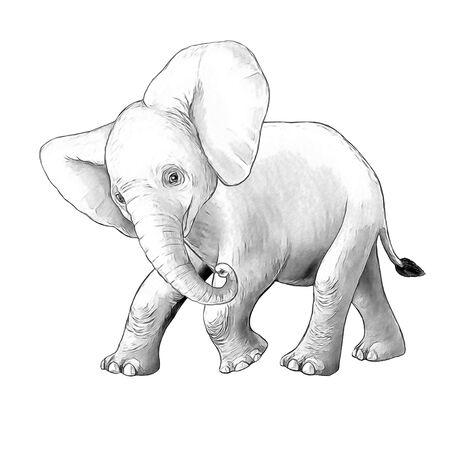 cartoon scene with little elephant on white background safari coloring page sketchbook illustration for children Banque d'images - 124513014