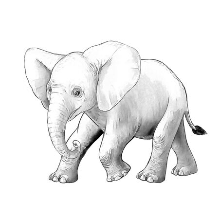 cartoon scene with little elephant on white background safari coloring page sketchbook illustration for children Banque d'images - 124513017